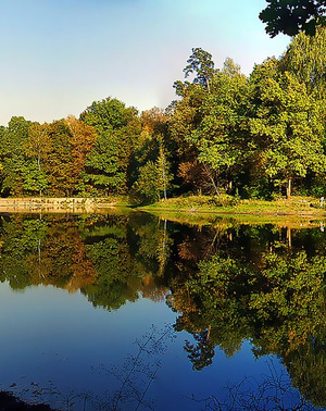 Рядом 3 лесопарка, реки и озера